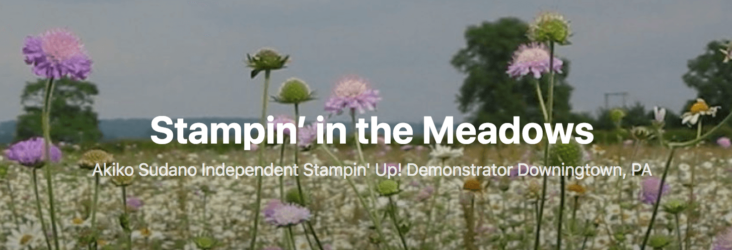 Stampin' In The Meadows